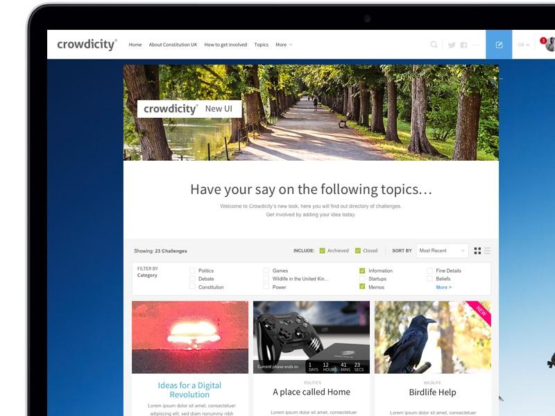 crowdicity design